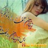shadi1357