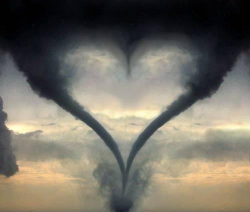 عشق: مغز یا قلب؟!