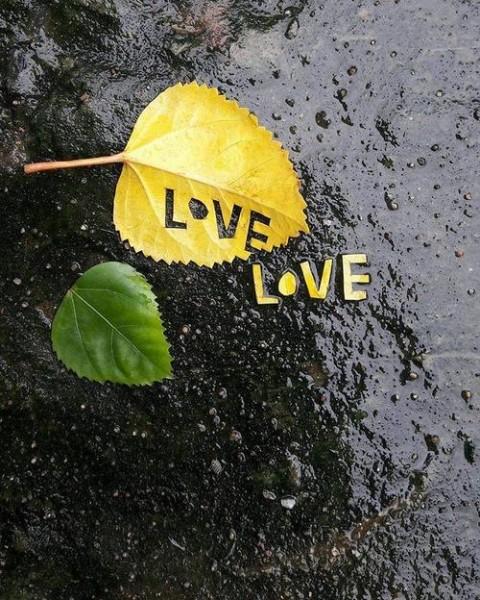 عشق مساحت مشخصی ندارد!